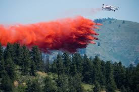 Wildfire Castle Rock Co by Authorities Battle Cold Springs Fire In Colorado
