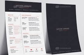 buy resume template cv resume template