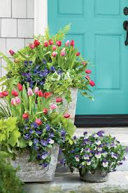 Southern Garden Ideas 22 Ways To Use Pansies Violas In Containers Garden Dress