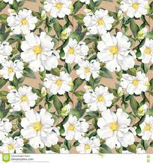 Magnolia Wallpaper by Seamless Floral Wallpaper With White Flowers Magnolia Peonies
