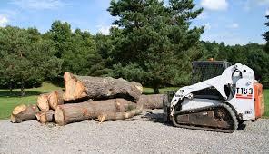 rm tree service canandaigua ny tree services
