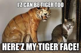 Tiger Meme - tiger face meme guy