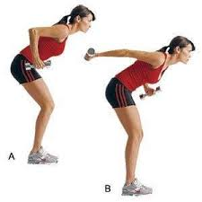 Triceps Bench Dips Exercises To Get Rid Of Flabby Arms