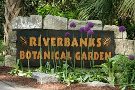 Botanical Gardens South Carolina 13 Beautiful Gardens In South Carolina To Visit