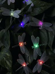 string lights wedding reception 20 led dragonfly globe long string