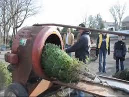 bucks county pa doylestown christmas tree farm youtube