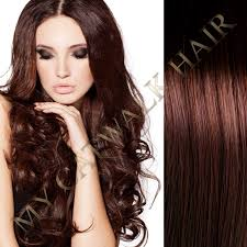 catwalk hair extensions clip in remy extensions 4 chestnut brown my catwalk hair