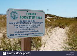 cape cod beach signs part 22 cape cod beach sign rustic