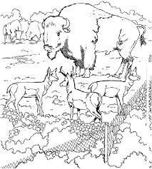 printable zoo animal coloring pages printable zoo coloring pages coloring home