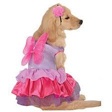 Pixie Halloween Costumes Pet Costumes Pet Halloween Costumes Sears