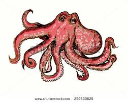 vector tentacles drawing on white background stock vector