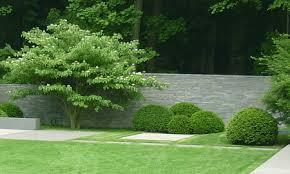 poolgarten moderne gartenplanung köln gartenplus