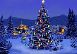 outdoor christmas trees decorations christmas celebrations outdoor