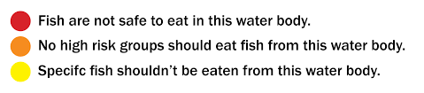 warning eating freshwater fish can be dangerous to your health