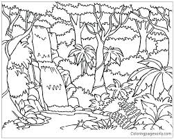 free coloring page of the rainforest rain forest coloring pages forest coloring page forest coloring page