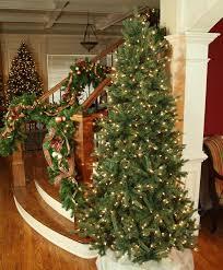 best 25 balsam fir tree ideas on pinterest balsam tree fir