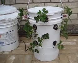 make your own sip tower garden garden culture magazine