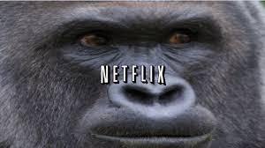 Gorilla Memes - netflix and memes youtube