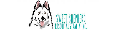 belgian shepherd rescue qld sweet shepherd rescue australia inc u2014 sweet shepherd rescue