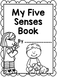 best 25 five senses kindergarten ideas on pinterest 5 senses