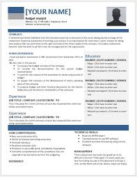 Technical Analyst Resume Sample by Budget Analyst Resume Contents Layouts U0026 Templates Resume Templates