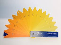 shades of orange why does yolk colour vary riverina