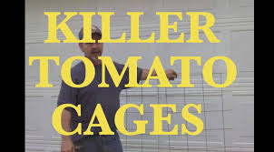 making serious tomato cages for cucumbers too youtube