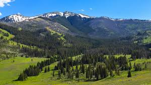 yellowstone backpacking u2013 gallatin mountains travel with rei