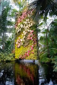 Botanical Garden Orchid Show New York Botanical Garden Orchid Show Daedalus Design And