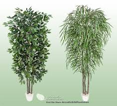 2 potted 7 real wood artificial trees ficus willow ebay