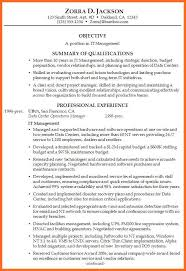resume professional summary examples career summary examples