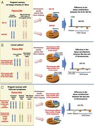 Dna Mapping Plasma Dna Tissue Mapping By Genome Wide Methylation Sequencing
