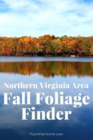 northern virginia fall foliage places fall colors