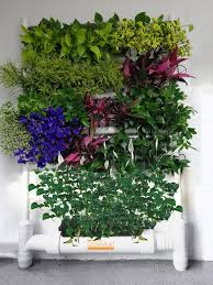 plant pick and plate the indoor gardening revolution u2013 gia on
