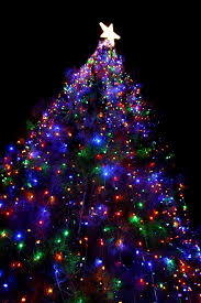 light up xmas pictures light up the christmas tree l7vzhgig st lucia news online