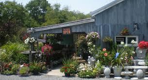lowes garden center flowers gardening ideas