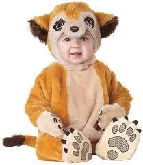 halloween bug costumes amazon com california costumes meerkat infant jumpsuit costume