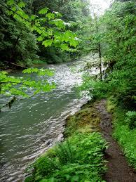 Fall Creek Falls Map Family Friendly Fun Awaits Along Fall Creek Trek Discovery