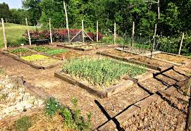 how to grow more food in less space u2013 a garden tour u2013 farm fresh