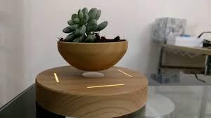 pot bonsai design levitating bonsai pot youtube