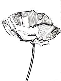 black and white flowers sketches home decor loversiq