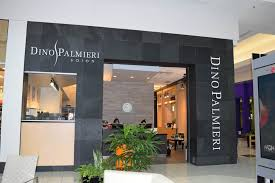 great northern mall salon north olmsted ohio dino palmieri
