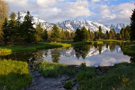 Wyoming national parks images 5 awe inspiring national parks for your usa road trip jpg