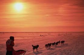 Alaska s Famed Iditarod Is Set to Begin Amid Turbulent Year