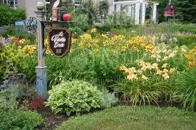 daylily garden border ideas 15 awesome daylily garden ideas