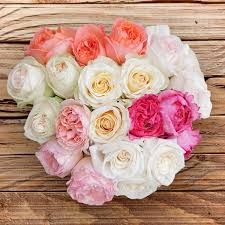 wholesale roses wholesale flowers wholesale roses in bulks booms magnaflor