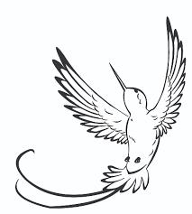simple hummingbird sketch