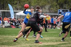 Hit The Floor Moving Screens - quidditch sport wikipedia