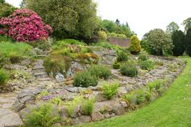 Alpine Rock Garden by Tips To Build A Beautiful Rock Garden At Home Artenzo