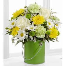 Empty Vase Closter Nj Everyday Flowers Selection For Just Because You Care